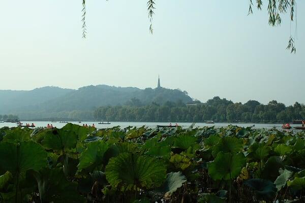 今天路遇三次游客把保俶塔认作雷峰塔,大概都读过鲁迅先生的大作吧。