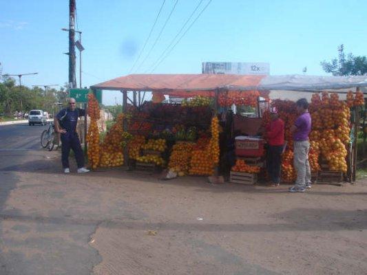 Naranjero Ñu Guazú