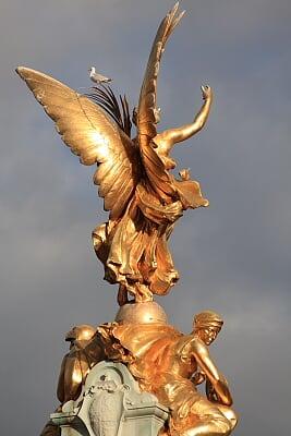 维多利亚纪念碑……顶上的飞鸟